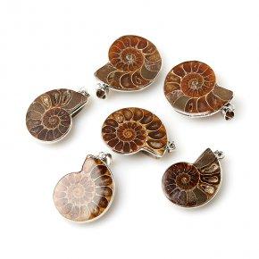 Кулон окаменелость Мадагаскар (биж. сплав) 4-5 см