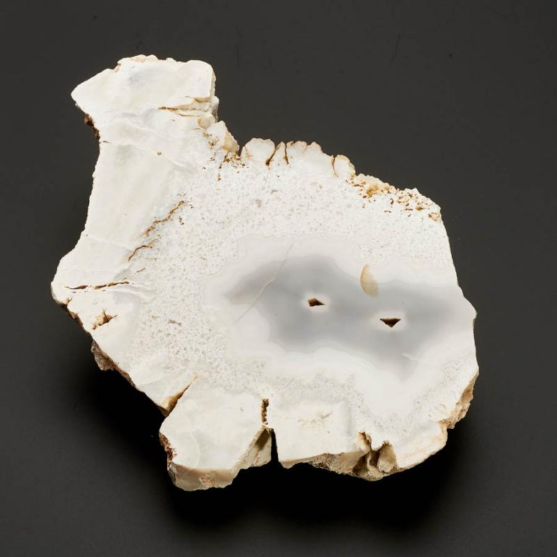 Срез агат серый, кремнистый песчаник  L