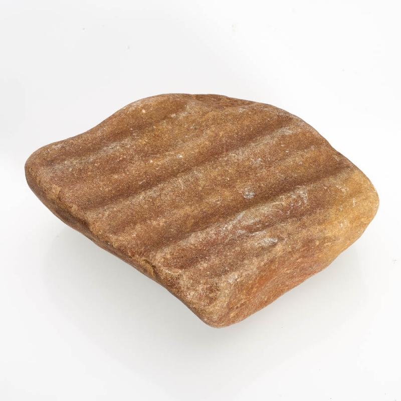 Окаменелость песчаник с отпечатком ряби  M от Mineralmarket