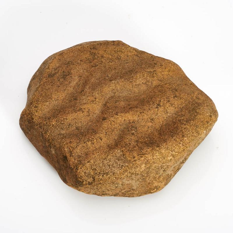Окаменелость песчаник с отпечатком ряби  L от Mineralmarket
