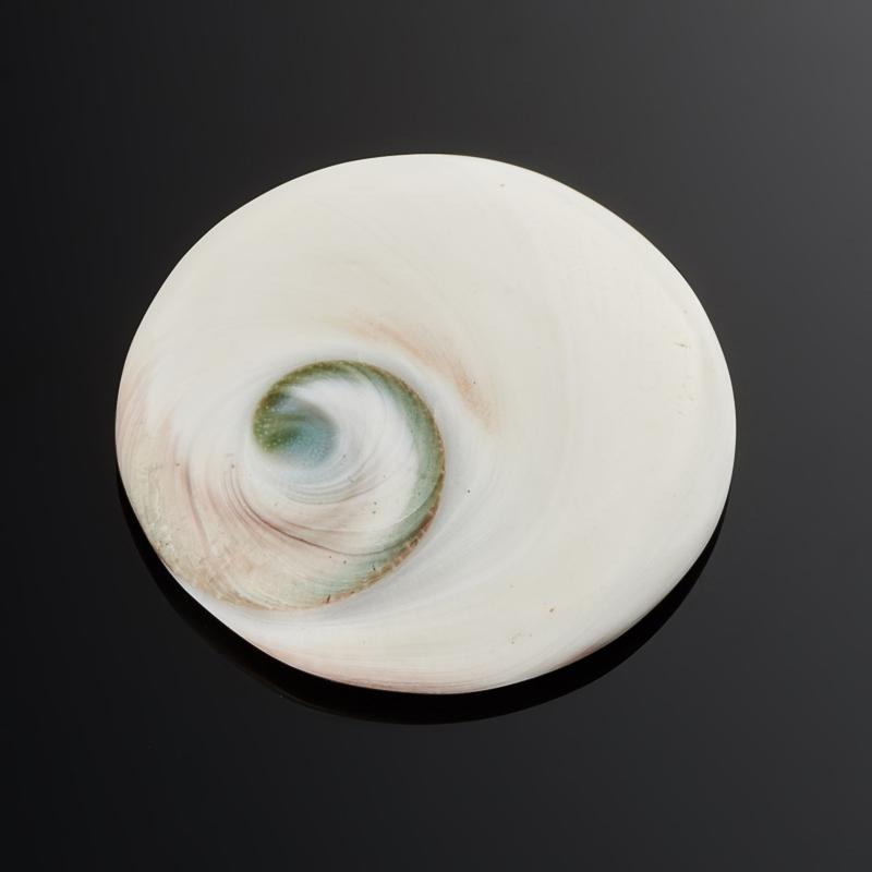 Кабошон окаменелая морская раковина  30 мм