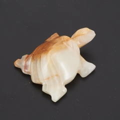Черепаха оникс мраморный Пакистан 6,5-7 см