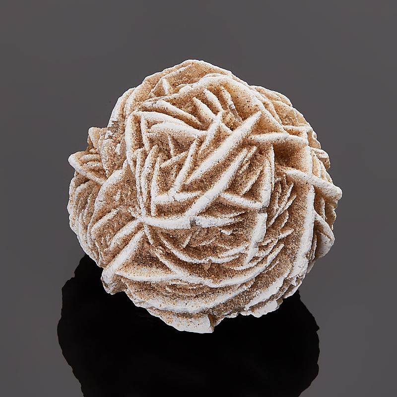 Образец пустынная роза  XS пламенная роза тюдоров