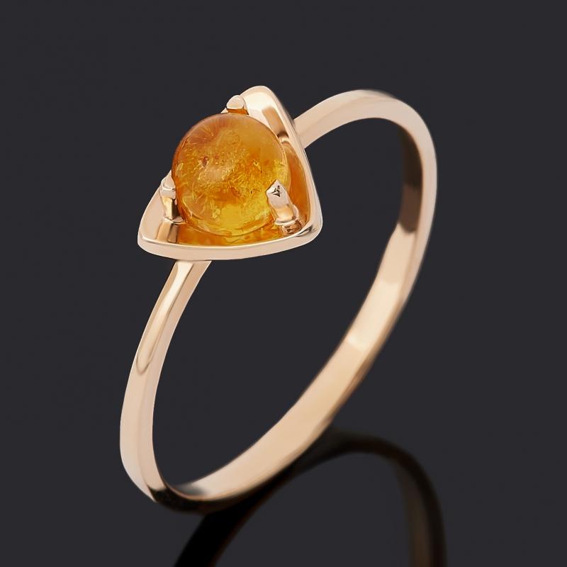Кольцо янтарь (золото 585 пр.) размер 17