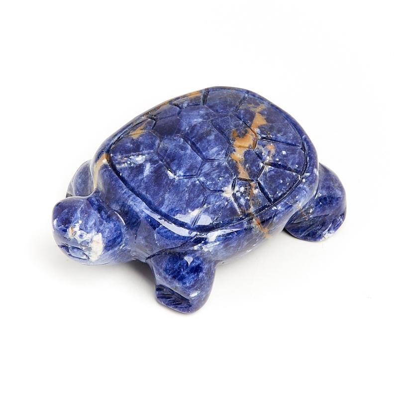Черепаха содалит 5 см