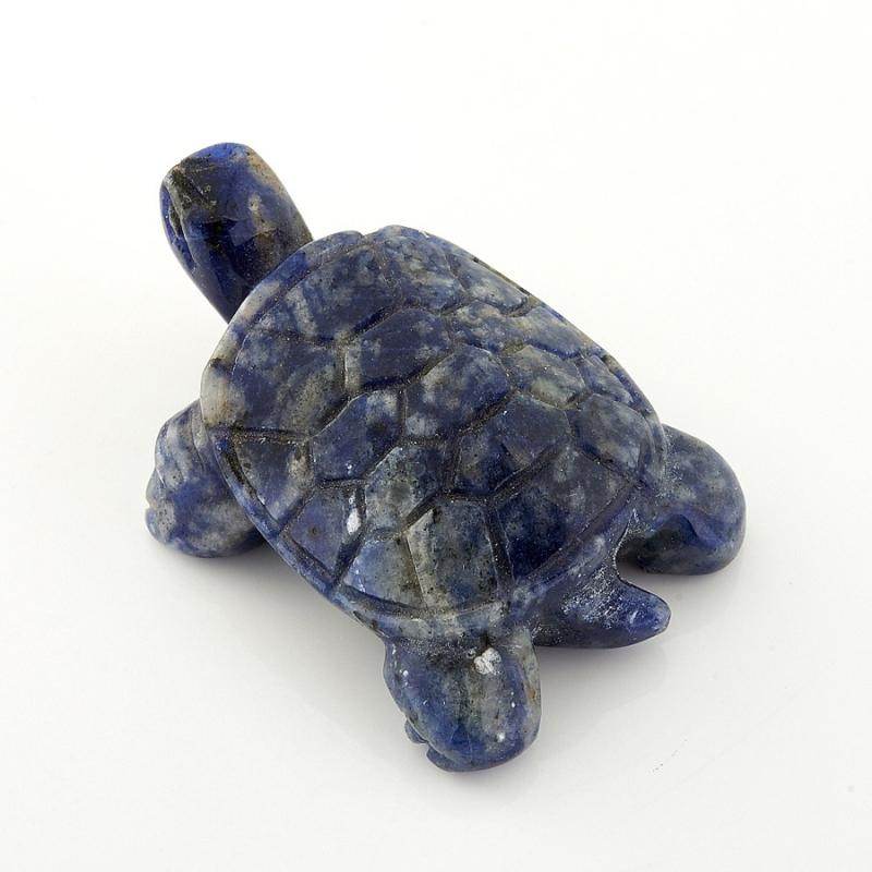 Черепаха содалит 5 см pui hing 350mg 30 3