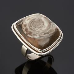 Кольцо окаменелость Мадагаскар (серебро 925 пр.) размер 18