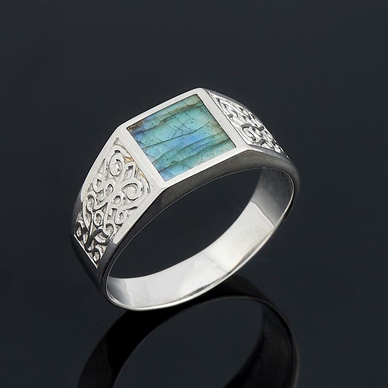 Кольцо лабрадор (серебро 925 пр.) размер 22
