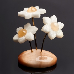 Цветы селенит Россия 6,5-7 см