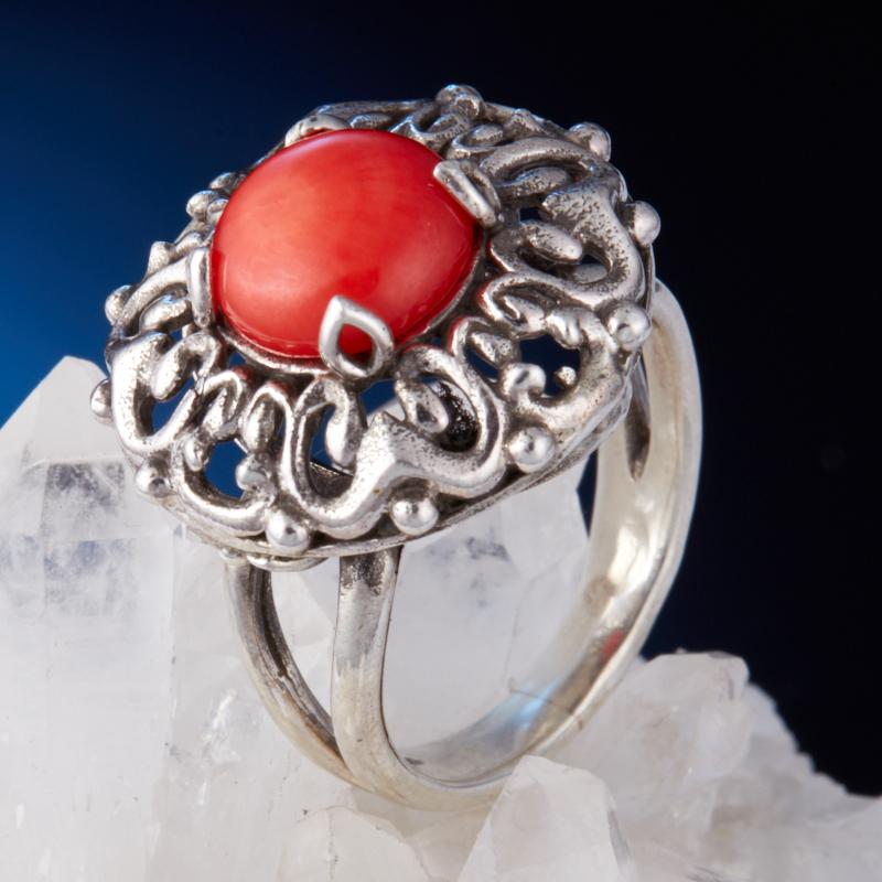 Кольцо коралл красный (серебро 925 пр.) размер 17,5 кольцо мех коралл