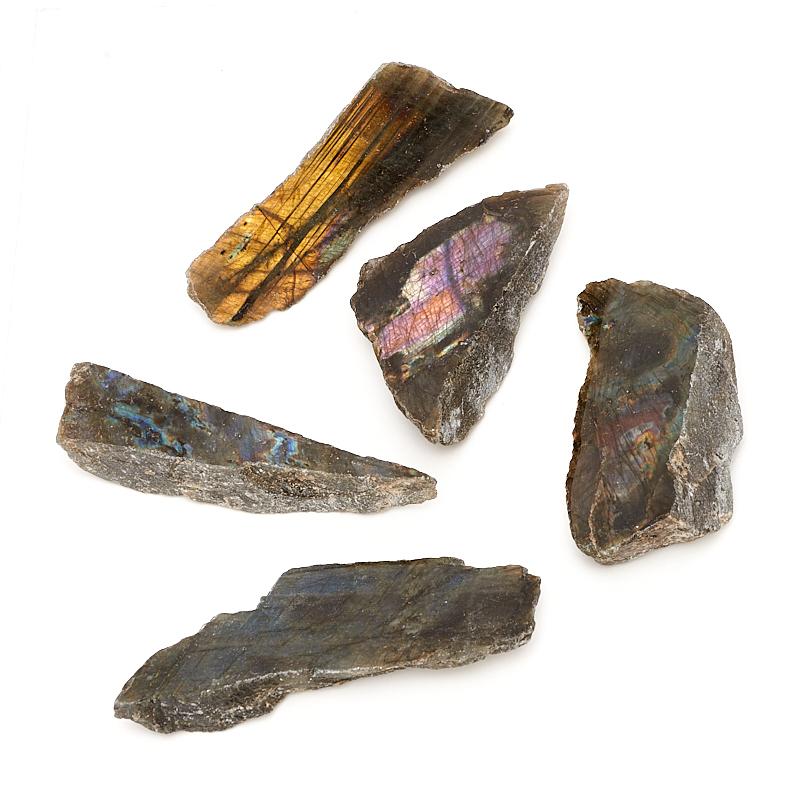 Образец лабрадор (8-10 см) 1 шт ndfeb magnet ring 1 1 2 odx1 8 idx1 2 thick strong neodymium permanent magnets rare earth magnets grade n42 nicuni plated