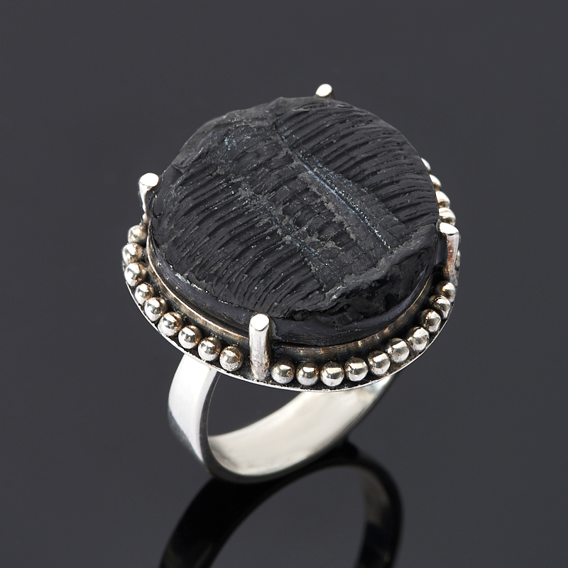 цена на Кольцо окаменелость (серебро 925 пр.) размер 18
