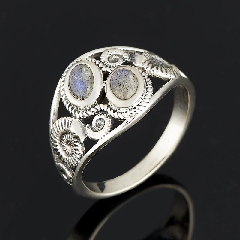 Кольцо лабрадор (серебро 925 пр.) размер 19 [супермаркет] jobon jingdong взрывы ключ автомобиля кольцо брелок кольцо кольцо кольцо весной картина носимого zb 052c серебро