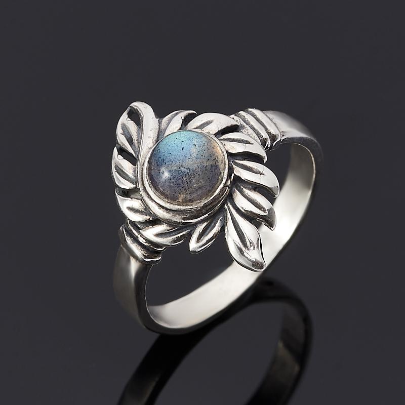 Кольцо лабрадор (серебро 925 пр.) размер 17,5 [супермаркет] jobon jingdong взрывы ключ автомобиля кольцо брелок кольцо кольцо кольцо весной картина носимого zb 052c серебро