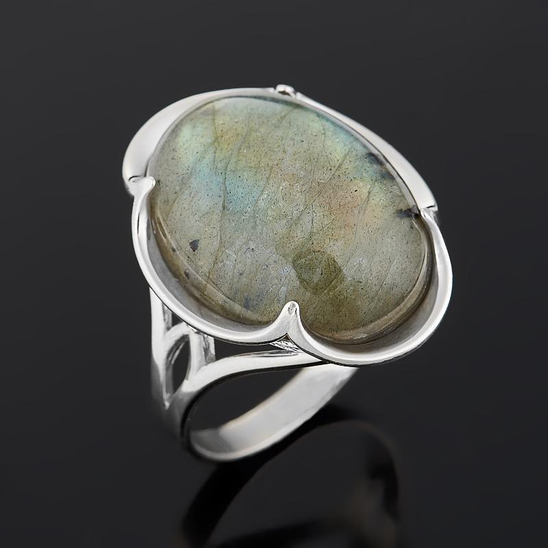 Кольцо лабрадор (серебро 925 пр.) размер 18