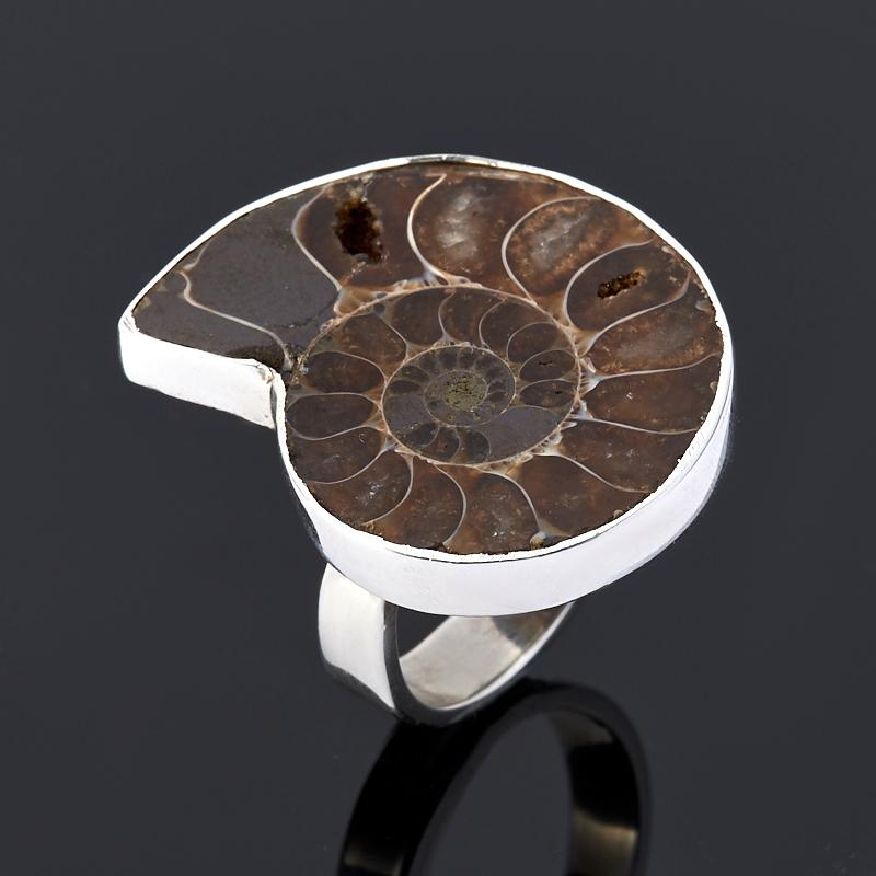 Кольцо окаменелость (серебро 925 пр.) размер 16 кольцо окаменелость серебро 925 пр размер 16