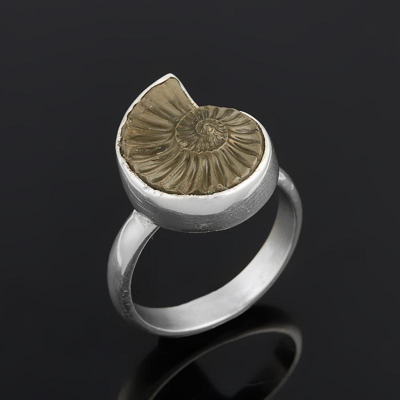 Кольцо окаменелость (серебро 925 пр.) размер 18 [супермаркет] jobon jingdong взрывы ключ автомобиля кольцо брелок кольцо кольцо кольцо весной картина носимого zb 052c серебро
