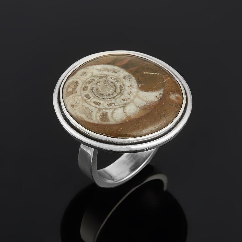Кольцо окаменелость (серебро 925 пр.) размер 16