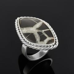 Кольцо септария (серебро 925 пр.) размер 17,5