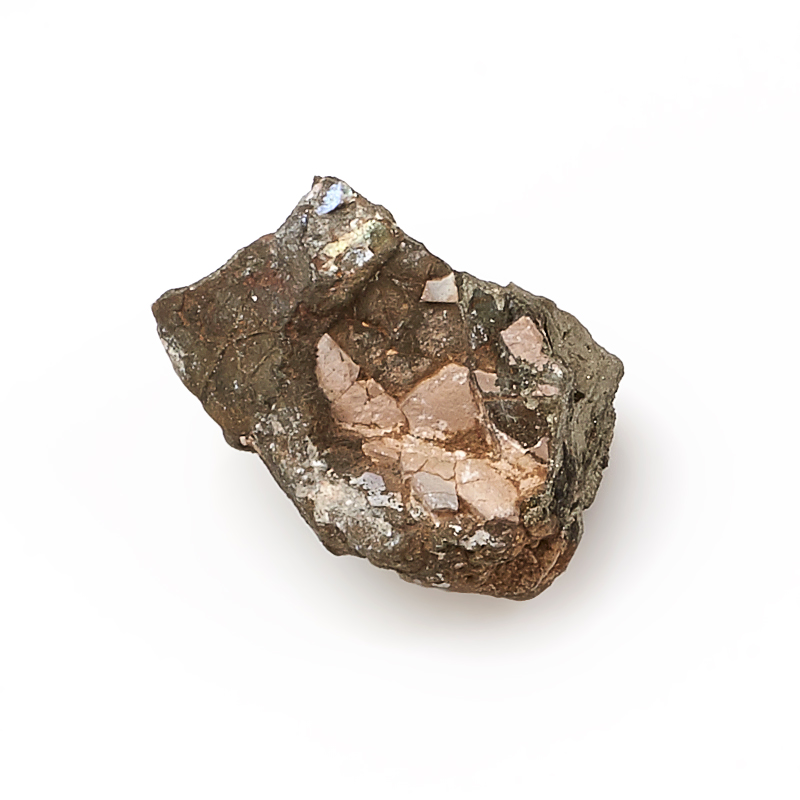 Ожелезненная окаменелость (2-3 см) 1 шт