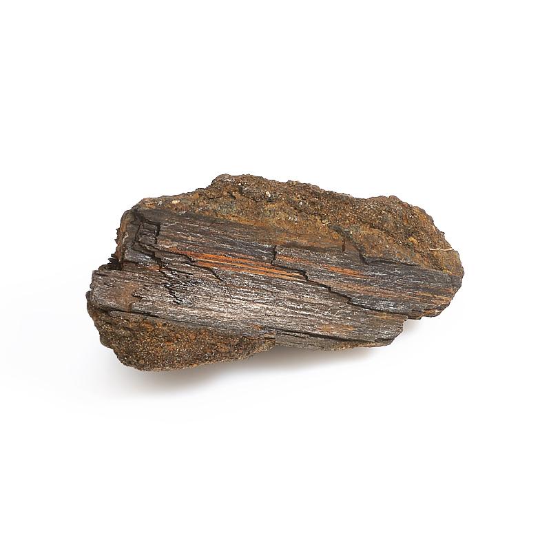 Окаменелое дерево S окаменелое дерево s