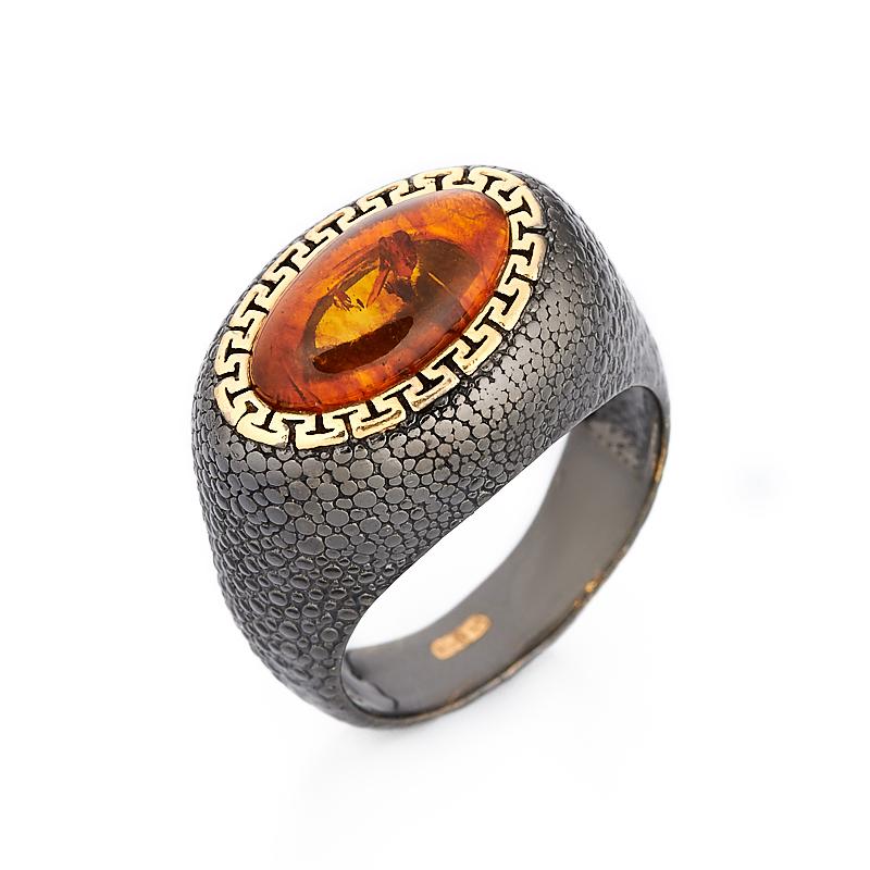 Кольцо янтарь пресс (серебро 925 пр., позолота) размер 18,5