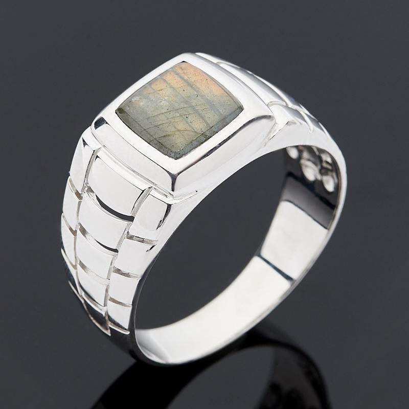 Кольцо лабрадор (серебро 925 пр.) размер 21,5