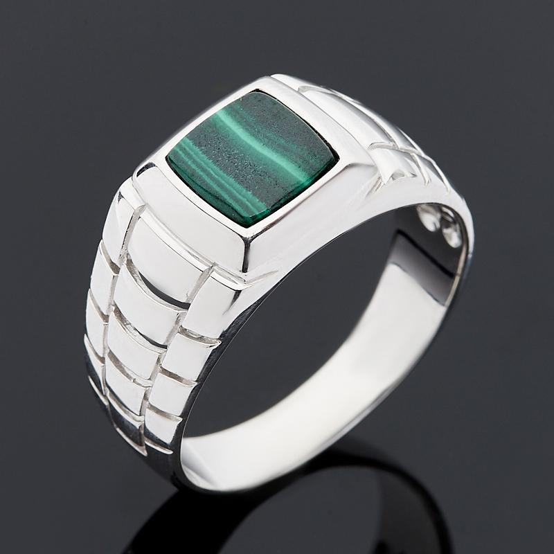 Кольцо малахит (серебро 925 пр.) размер 22 кольцо plomi 925 925 sr388 us size8