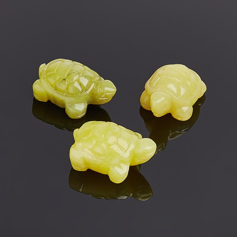 Фото - Черепаха серпентин 2,5-3 см gkd 3 yuk