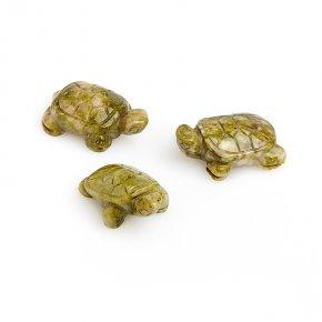 Черепаха офиокальцит Россия 2,5-3 см