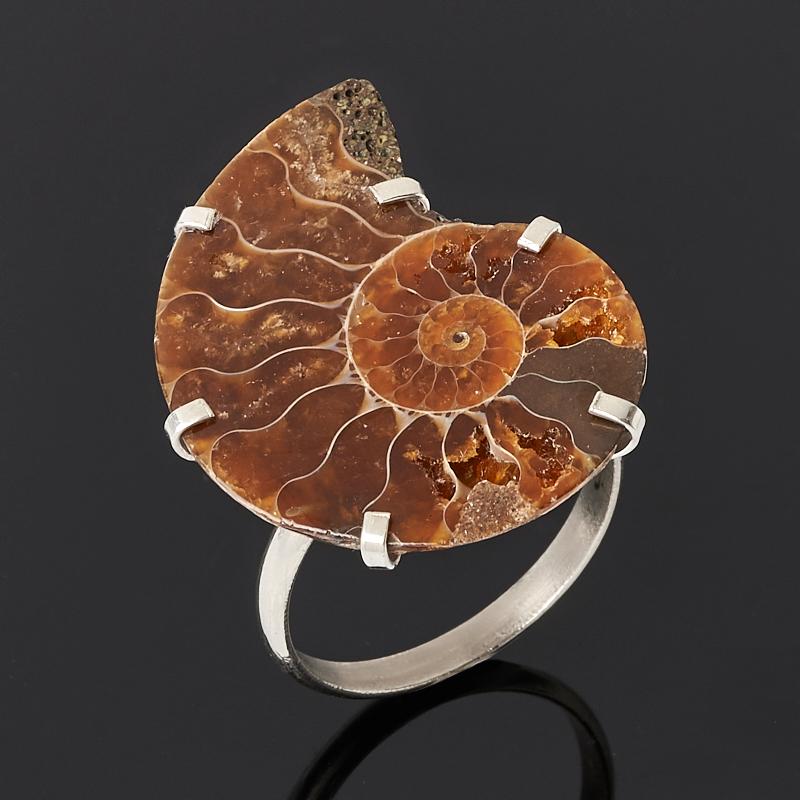 Кольцо окаменелость (нейзильбер) размер 19,5