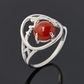 Кольцо сердолик Ботсвана (серебро 925 пр. родир. бел.) размер 17,5