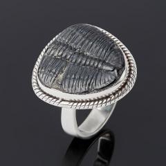 Кольцо окаменелость Россия (серебро 925 пр.) размер 18