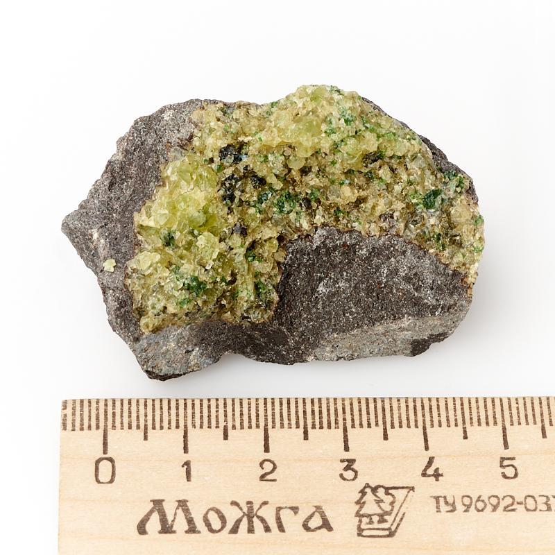 Щетка хризолит США S (4-7 см)