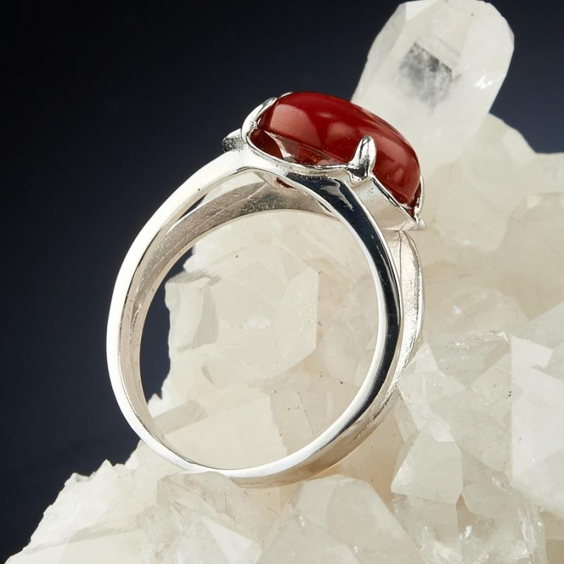 [del] Кольцо коралл красный Индонезия (серебро 925 пр.) размер 18,5