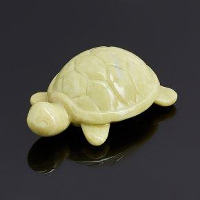 Черепаха офиокальцит Россия 6 см