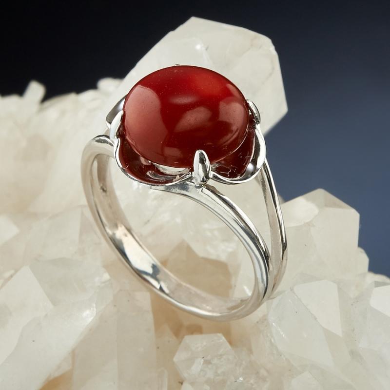 [del] Кольцо коралл красный Индонезия (серебро 925 пр.) размер 20