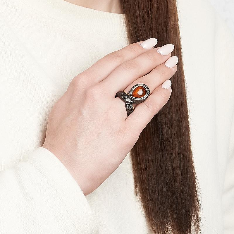 Кольцо янтарь пресс Россия (серебро 925 пр. позолота, родир. черн.) размер 19,5
