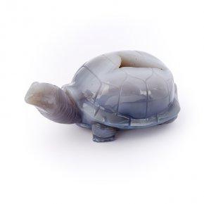 Черепаха агат Бразилия 15 см