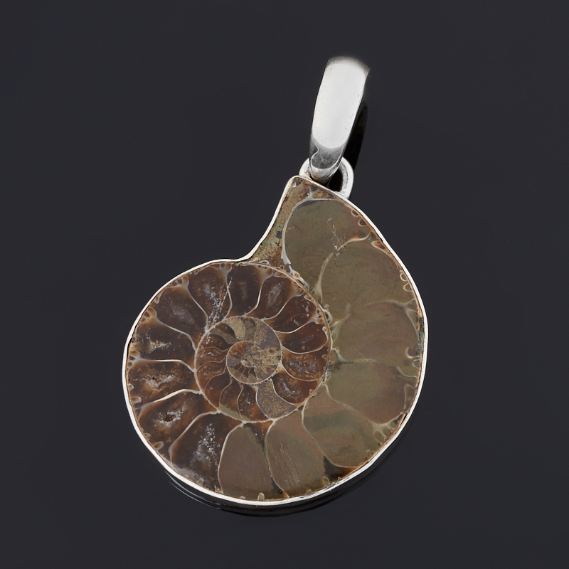 Кулон окаменелость Мадагаскар (серебро 925 пр.)