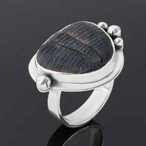 Кольцо окаменелость Марокко (серебро 925 пр. оксидир.) размер 17