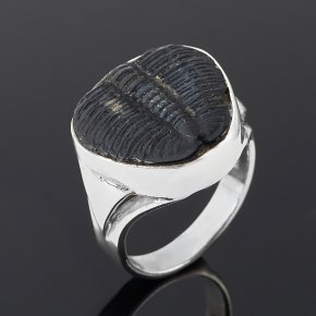 Кольцо окаменелость Марокко (серебро 925 пр.) размер 18,5