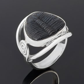 Кольцо окаменелость Марокко (серебро 925 пр.) размер 18