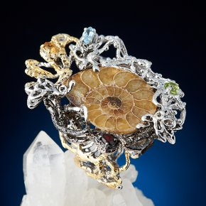Кольцо окаменелость Австралия (серебро 925 пр. позолота, родир. бел., родир. черн.) (регулируемый) размер 17
