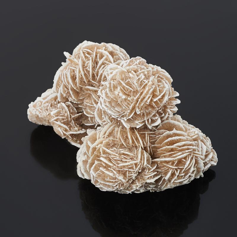 Образец пустынная роза M (7-12 см)