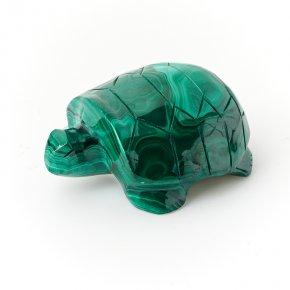 Черепаха малахит Конго 6 см