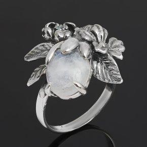 Кольцо лунный камень (адуляр) Индия (серебро 925 пр. оксидир.) размер 17,5
