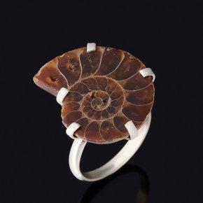 Кольцо окаменелость Мадагаскар (нейзильбер) размер 17,5