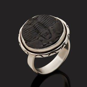 Кольцо окаменелость Марокко (серебро 925 пр. оксидир.) размер 18