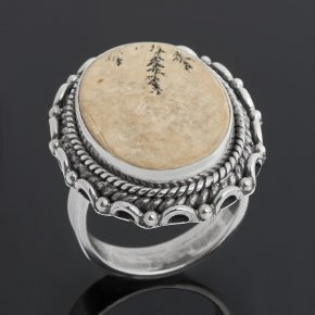 Кольцо яшма дендритовая Россия (серебро 925 пр. оксидир.) размер 17
